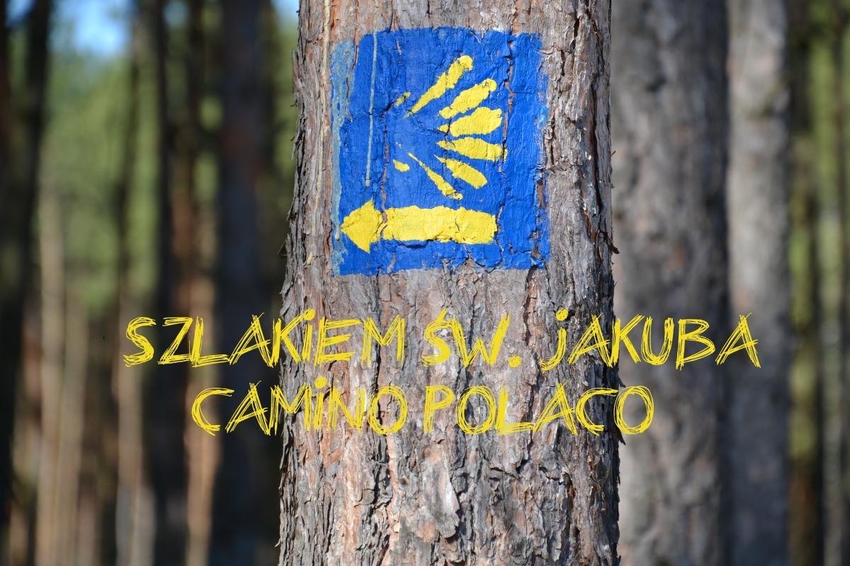 Camino Polaco- projekt