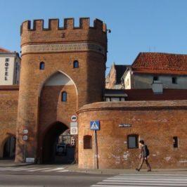 Camino Polaco. Odcinek 7 : Ciechocin – Toruń ( 30 km)
