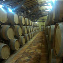 Oh, le Vin! [3] Tastes of wine part 2