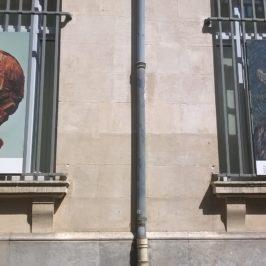 Van Gogh na żywo